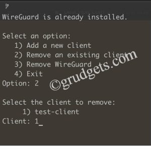 delete client in wireguard